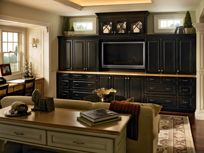 A bank of Onyx cabinetry topped with mullion glass doors creates a dramatic focal point and stores media equipment, books and games while highlighting collectibles.